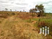 5 Acres For Sale | Land & Plots For Sale for sale in Kiambu, Witeithie