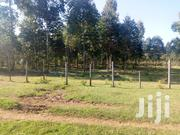 22 Acres for Sale in Njoro | Land & Plots For Sale for sale in Nakuru, Njoro