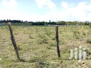 1/4 Acre Land Sale | Land & Plots For Sale for sale in Laikipia, Nanyuki