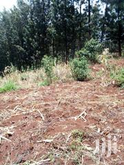 100 BY 100 PLOT  FOR SALE | Land & Plots For Sale for sale in Nairobi, Kangemi