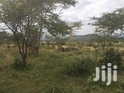 Land For Sale | Land & Plots For Sale for sale in Nakuru, Elementaita