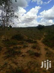 Kithimani 50by100 Plots For Sale With Ready Title Deed | Land & Plots For Sale for sale in Murang'a, Gaichanjiru