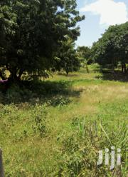 1.5acre Fertile Developed Farm 7bedroom House Ogembo To Kenyenya Road | Land & Plots For Sale for sale in Kisii, Boochi/Tendere