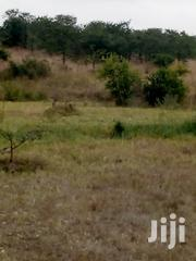 Land For Sale | Land & Plots For Sale for sale in Kajiado, Ngong