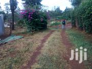 House to Let | Houses & Apartments For Rent for sale in Meru, Municipality