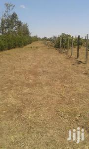 1/8 Acre Plots At Nyaribo | Land & Plots For Sale for sale in Nyeri, Kiganjo/Mathari