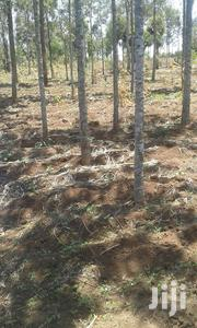 1.5 Acres Brookside (Chaka) - Mweiga | Land & Plots For Sale for sale in Nyeri, Kiganjo/Mathari