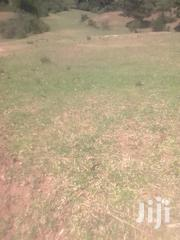 5 Acre Piece Of Land | Land & Plots For Sale for sale in Laikipia, Marmanet