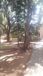 3 Bedroom On Large 1/4 Own Compd 22M | Houses & Apartments For Sale for sale in Kilifi, Shimo La Tewa