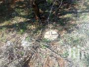 Plots In Kimuka Oloishobor For Sale | Land & Plots For Sale for sale in Kajiado, Ngong