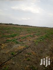 50 Acres At Kitengela Olturoto | Land & Plots For Sale for sale in Machakos, Athi River