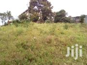 1/2 Acre Forsale Kiambu | Land & Plots For Sale for sale in Kiambu, Township C