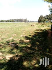 Land 70 Acres At Cheplaskei Very Prime Land 5m Per Acre | Land & Plots For Sale for sale in Uasin Gishu, Langas