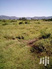 2 Acres Land At Mugumo, Daiga, Nanyuki Near For Sale | Land & Plots For Sale for sale in Laikipia, Umande