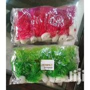 Aquarium Plants 4 Inches | Pet's Accessories for sale in Nairobi, Nairobi Central