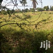 Land On Sale Kikambala | Land & Plots For Sale for sale in Mombasa, Majengo