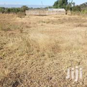Flat Rate.50*100 Plots | Land & Plots For Sale for sale in Nakuru, Gilgil