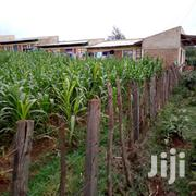 Plot For Sale In Kapkatet Near University | Land & Plots For Sale for sale in Kericho, Kapkatet