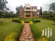 House 4 Sale | Houses & Apartments For Sale for sale in Nairobi, Roysambu
