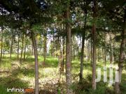 Nyandarua- 2 Acres For Sale | Land & Plots For Sale for sale in Nyandarua, Mirangine