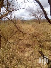 6000 Acre Prime Agriculture Land For Lease | Land & Plots for Rent for sale in Makueni, Makindu