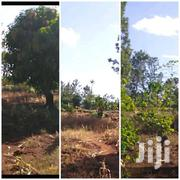 Makuyu  2 Acres At 2.8m Per Acre | Land & Plots For Sale for sale in Murang'a, Makuyu
