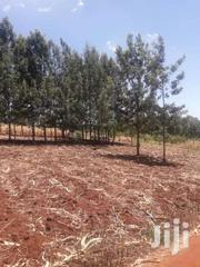 30 Acres At Kabati WEMPA 3kms From Thika Rd 400m From Mitumbiri Tarmac | Land & Plots For Sale for sale in Nyeri, Gatarakwa