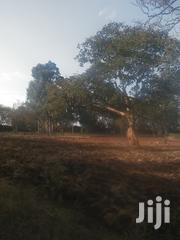 Nyeri Prime Property 12.5 Acres, Touching Tarmac | Land & Plots For Sale for sale in Nyeri, Dedan Kimanthi