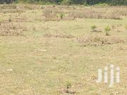 2 Acres Land for Sale at Solio, Naromoru | Land & Plots For Sale for sale in Nyeri, Naromoru Kiamathaga