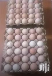 Kienyeji Improved Fertilized Eggs. | Livestock & Poultry for sale in Kiambu, Ngoliba