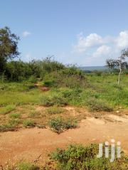 2000 Acre Land For Lease | Land & Plots for Rent for sale in Makueni, Kikumbulyu South