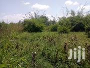 Residential Plots for Sale | Land & Plots For Sale for sale in Busia, Bukhayo West