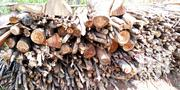 Euclyptus Firewood And Fuel | Building Materials for sale in Nairobi, Nairobi Central