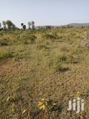 1 Acre Of Land For Sale Gilgil | Land & Plots For Sale for sale in Nakuru, Gilgil