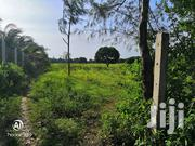 1.5 Acre in Animo Area | Land & Plots For Sale for sale in Kilifi, Mtepeni