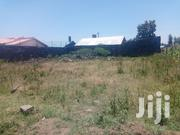 1/8th Acre Vacant Plot for Sale in Barnabas Estate, Nakuru | Land & Plots For Sale for sale in Nakuru, Nakuru East
