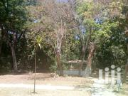 Plot For Sale | Land & Plots For Sale for sale in Machakos, Kangundo East
