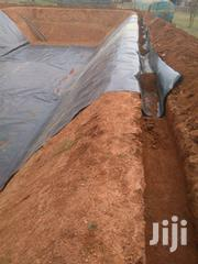 Dam And Fish Pond Construction | Building & Trades Services for sale in Meru, Kangeta