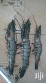Prawns Fish | Meals & Drinks for sale in Mombasa, Majengo