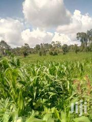 Upper Hill 1/4 Acre At 140m Off Hospital Rd,  Very Suitable For Apartm | Land & Plots For Sale for sale in Nairobi, Kilimani