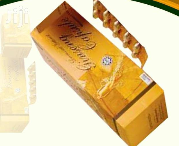 Archive: Panax Ginseng