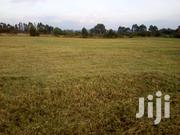 Plot for Sale in Nanyuki. Call Peter On | Land & Plots For Sale for sale in Nairobi, Kasarani