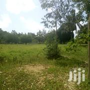Plots on Sale at Mtwapa Majengo | Land & Plots For Sale for sale in Mombasa, Majengo