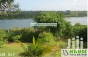 4 Br House on 1 Acre Compound in the Creek of Mtwapa for Rent ID547 | Houses & Apartments For Rent for sale in Mombasa, Bamburi