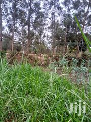 1 Acre Land | Land & Plots For Sale for sale in Embu, Mbeti South