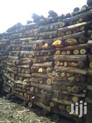 Eucalyptus Firewood | Building Materials for sale in Nyeri, Dedan Kimanthi