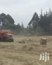 Boma Rhodes Hay For Sale | Feeds, Supplements & Seeds for sale in Laikipia, Nanyuki