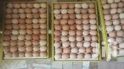 Kuroiler Eggs | Livestock & Poultry for sale in Kiambu, Hospital (Thika)