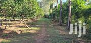 Mtwapa 50 by 100ft Plot on Sale | Land & Plots For Sale for sale in Mombasa, Shimanzi/Ganjoni