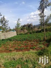 40m By 80m | Land & Plots For Sale for sale in Kiambu, Limuru Central